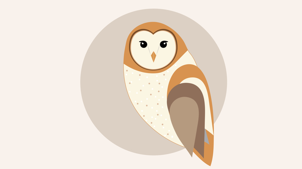 30 Impressive Owl Illustrations for Inspiration