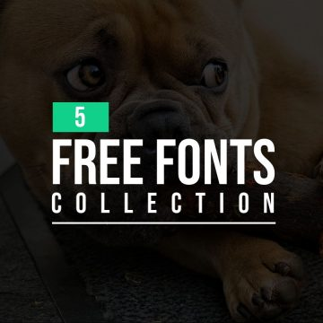 Latest Free Fonts Collection | 5