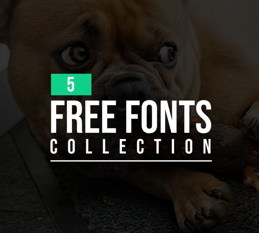 Latest Free Fonts Collection   5