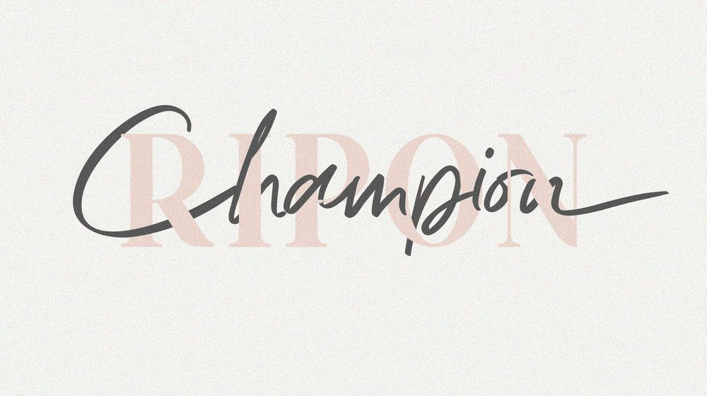 20+ Pretty Font Duos for Your Creative Design